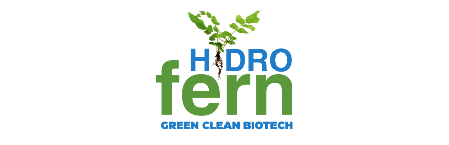 Logo Hydro Fern